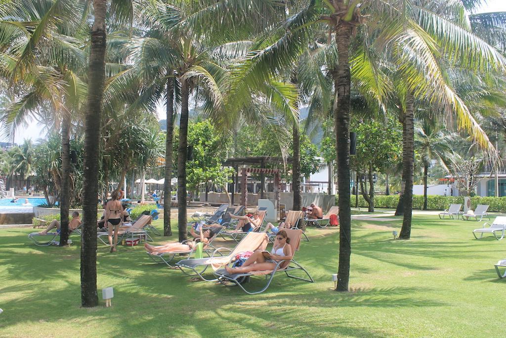 Esperguiçando à sombra das palmeiras
